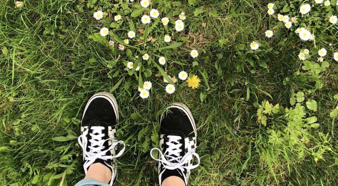 Schuhe im Gras neben Gänseblümchen